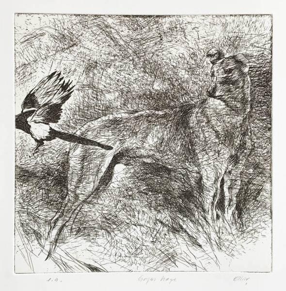 Goyas hage av Lars Elling