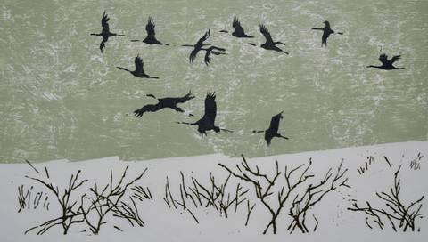 Bilde av Tolv traner av Lasse Kolsrud
