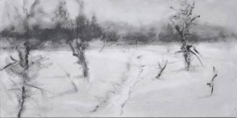 Bilde av Fra serien Myrfrise vinter 3 av Kjetil Haug