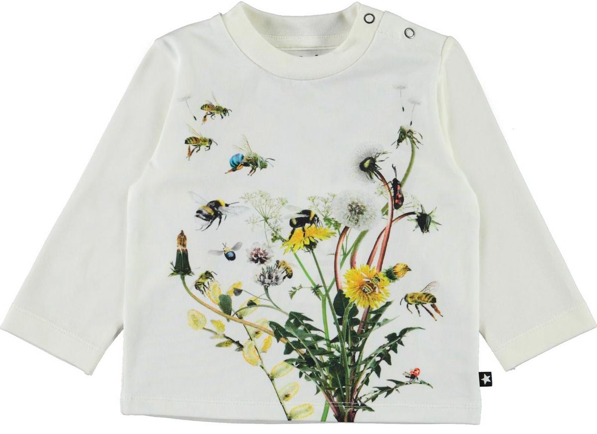 Genser enovan pollinators