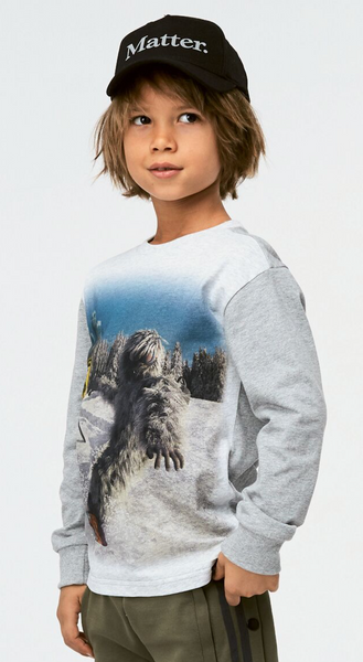 Bilde av genser risci yeti
