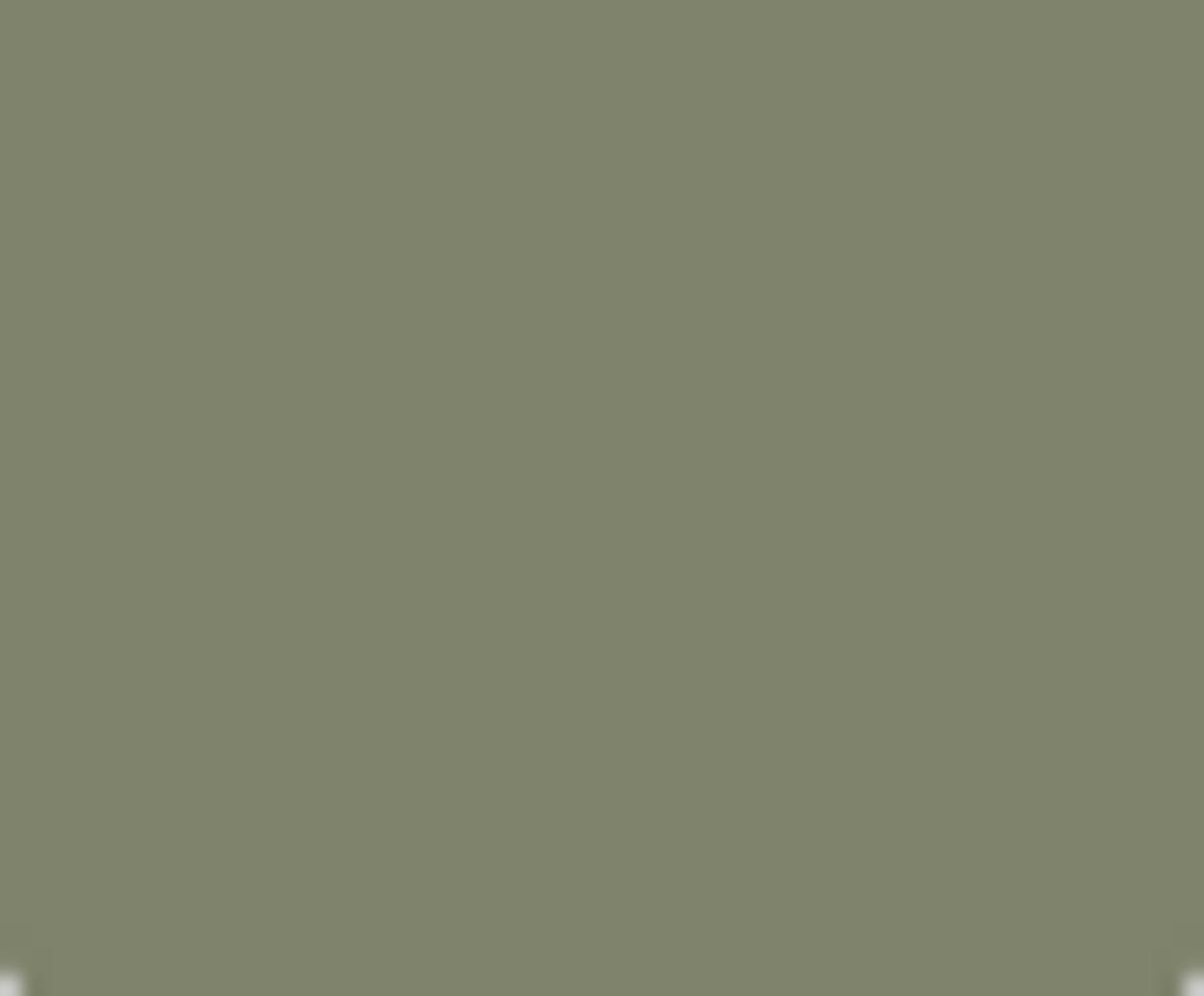 Jakke vito anorak oil green