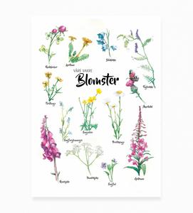 Bilde av Våre vakre blomster