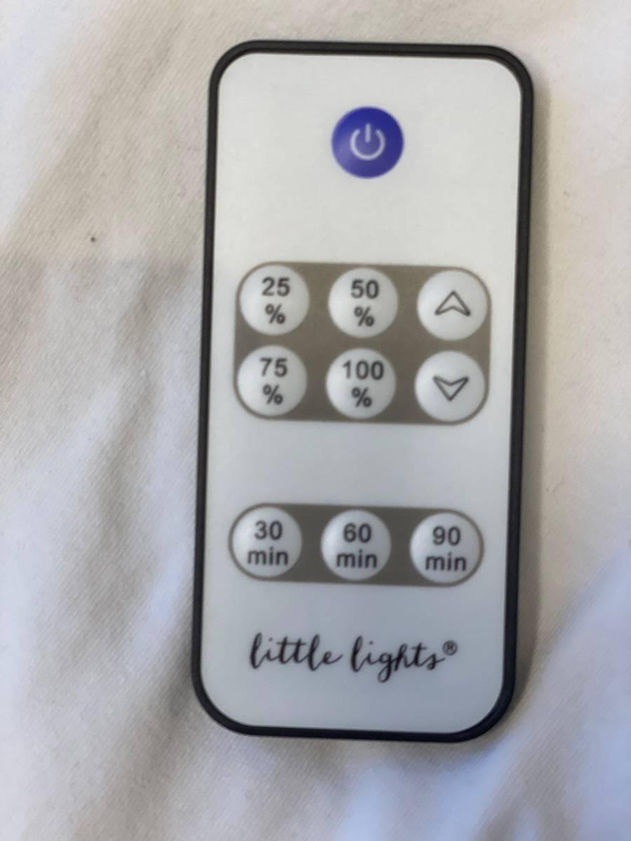 Little Lights Lampe Løve