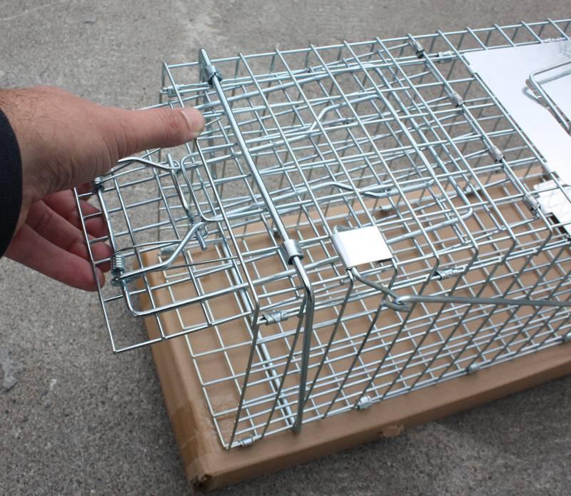 Bilde av Kattefelle XL - sammenleggbar for levende fangst