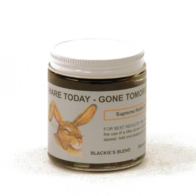 Bilde av Hare today - Gone tomorrow