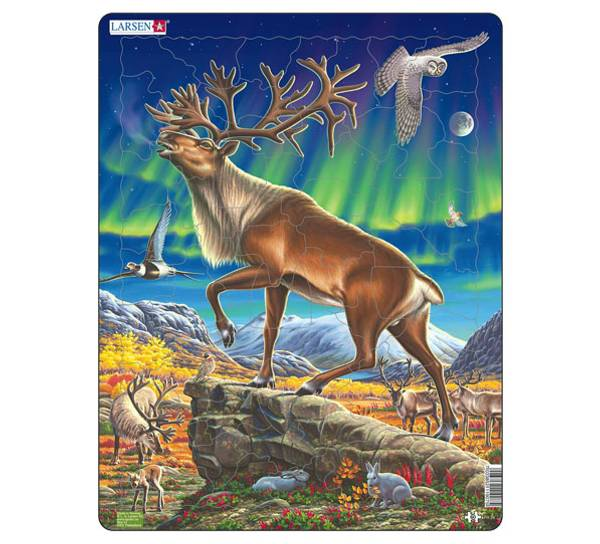 Image of Puzzle with reindeer in Northern lights