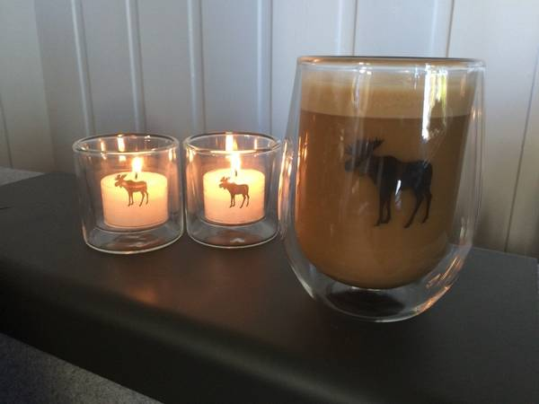 Image of Silver Moose double wall glass