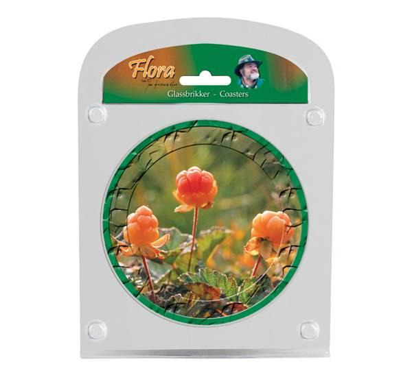 Image of Glassbrikker Flora multe.