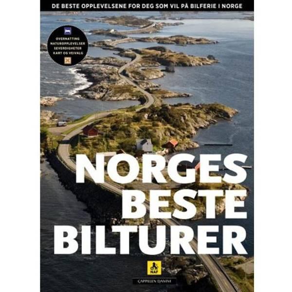 Bilde av Norges beste bilturer