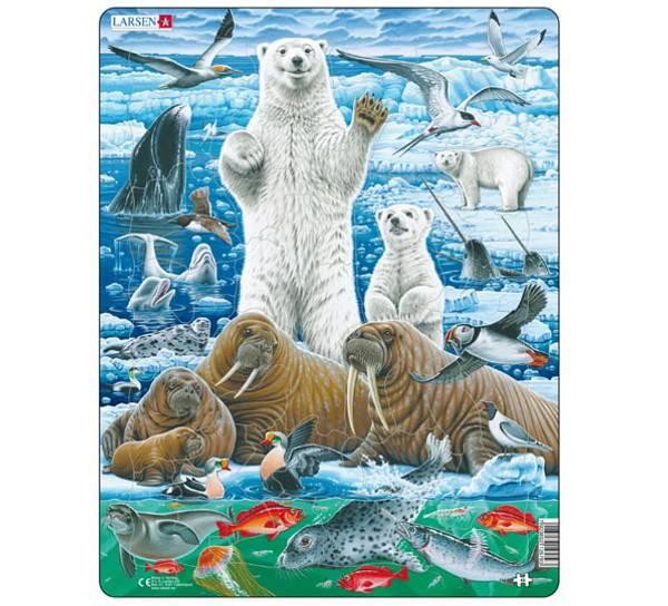 Bilde av Puslespill  Isbjørn og Hvalross, 46 brikker