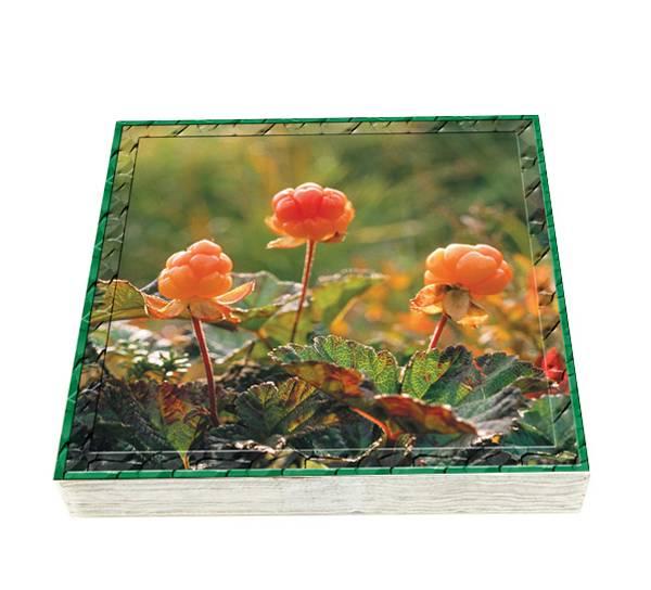Bilde av Flora Servietter Multe