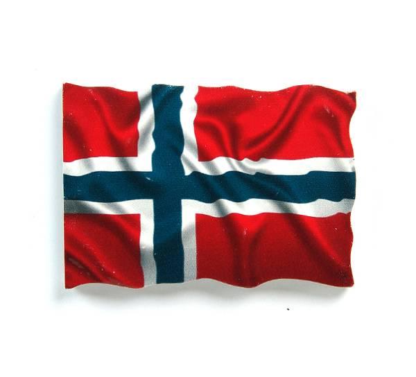 Bilde av Magnet, norsk flagg 3D