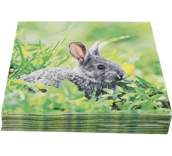 Bilde av Servietter, haren i gresset