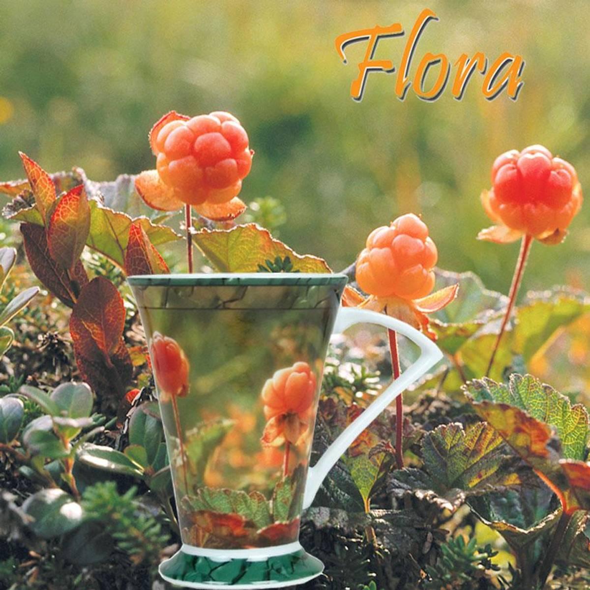 Flora Krus Nr.1 Multe