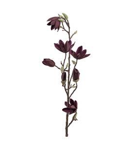 Bilde av Mr Plant - Magnolia 100 cm