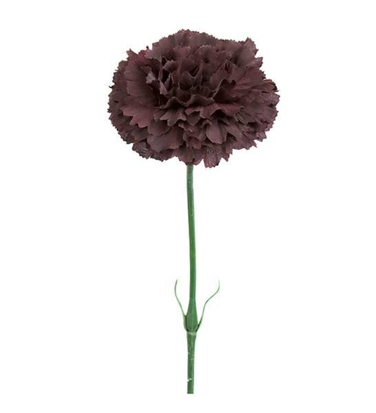 Mr Plant - Nellik 55 cm