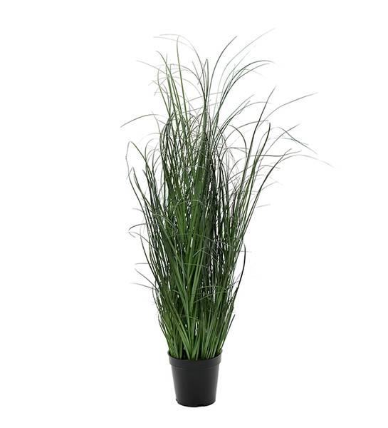 Mr Plant - Gress 80cm