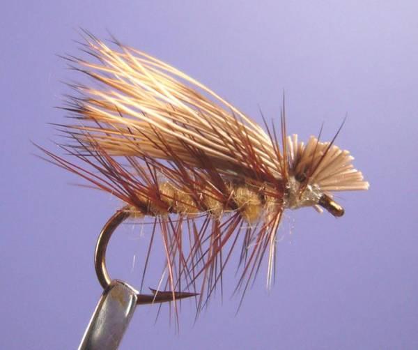 Bilde av Elk Hair Caddis