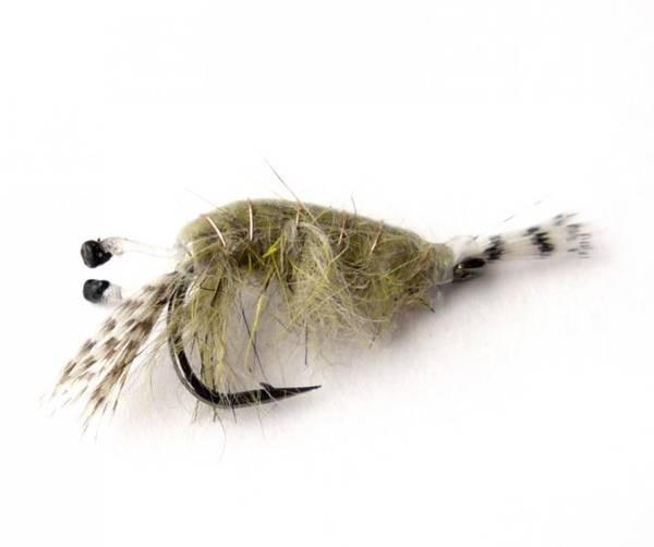 Bilde av Wallington Shrimp