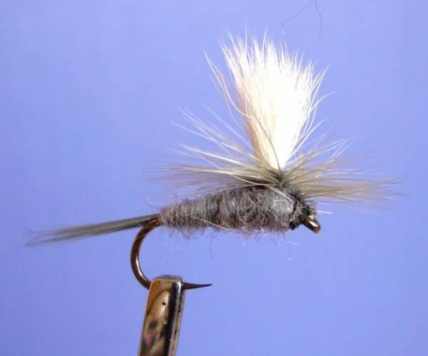 Bilde av Parachute Blue Dun