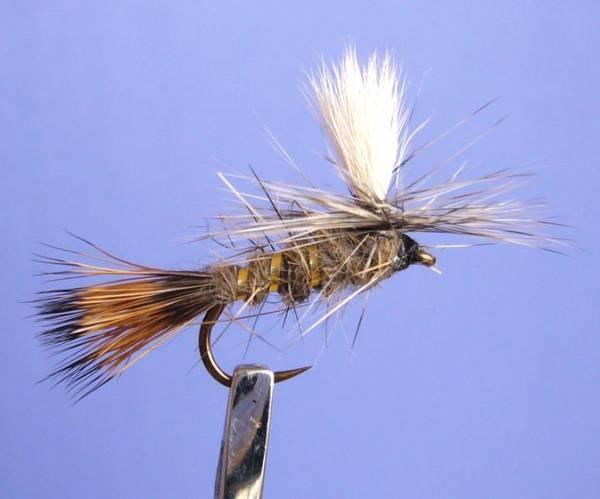 Bilde av Parachute Gold Ribbed Hares