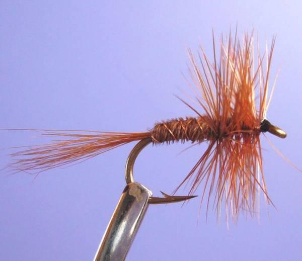 Bilde av Pheasant Tail Natural