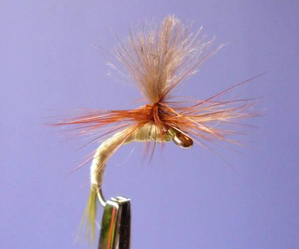Bilde av CDC Parachute Pale Olive