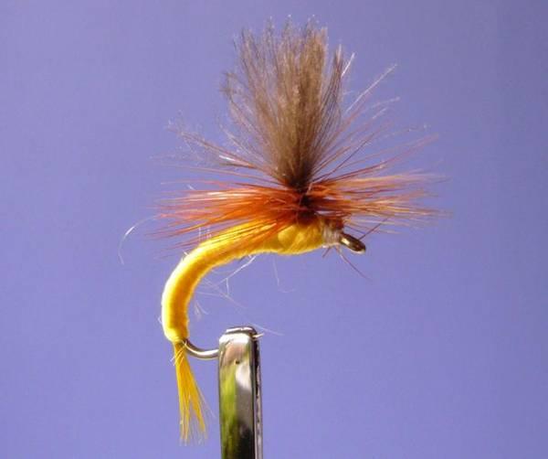 Bilde av CDC Parachute Yellow