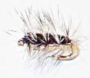 Bilde av Wolly Worm - sort (palmer mygg)