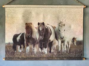 Bilde av Plansje hester 94x64cm
