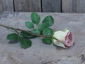 Bilde av Rose lavendel 40cm