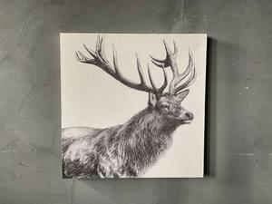Bilde av Lerretsbilde hjort 40x40 cm