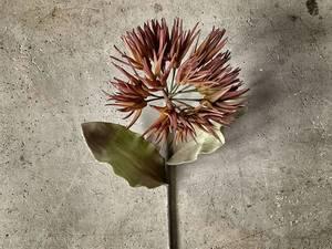 Bilde av Blomst brun 82cm