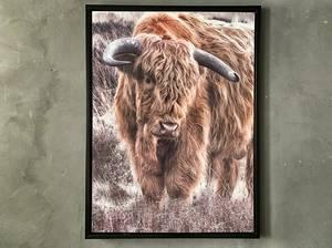 Bilde av Bilde okse 60x80 cm