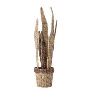 Bilde av Bekorasjons blomst natur bankuan gress H: 66 cm