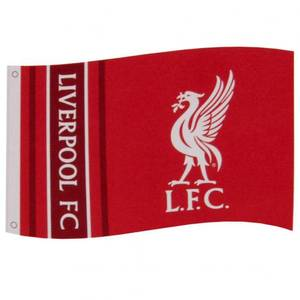 Bilde av Liverpool flagg WM