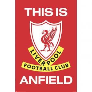 Bilde av Liverpool plakat TIA