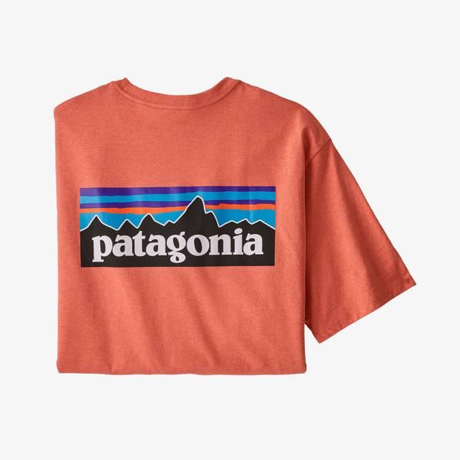 Bilde av Patagonia P-6 Logo Responsibili-Tee Big Coho