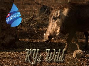 Bilde av RY 4 Wild - Skausaft 50 ml