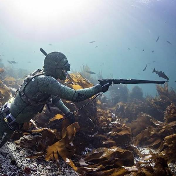 Bilde av Webinar - Fordypningskurs undervannsjakt
