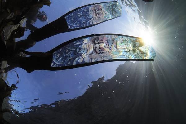 Bilde av DiveR Frivannsliv - Neptune Carbon Medium
