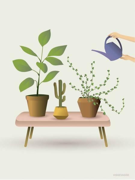 Bilde av PLAKAT - Planter Som Gror - Vissevasse
