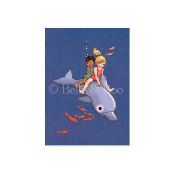 Bilde av KORT - Dolphin Adventure - Belle & Bo