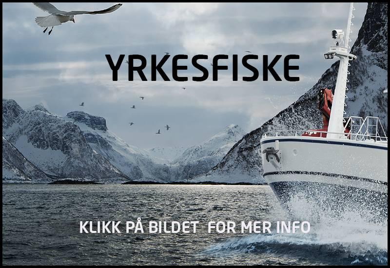yrkesfiske yrkesfisker fiskeri kystfiske kystfiskeri