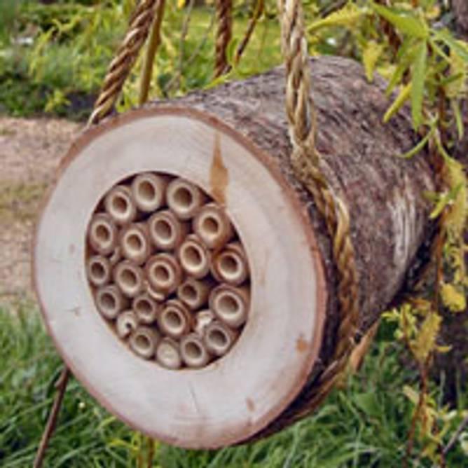 Bilde av Vinterhus for humler og bier