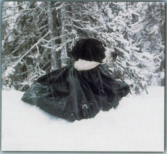 Bilde av Jægerens hvilepose
