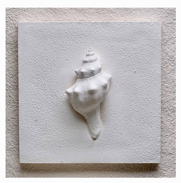 Bilde av Sneglehus, str 20x20 cm