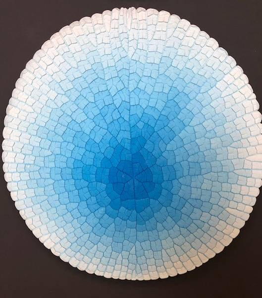 Bilde av Victoria Cruziana, blå 110 cm Ø