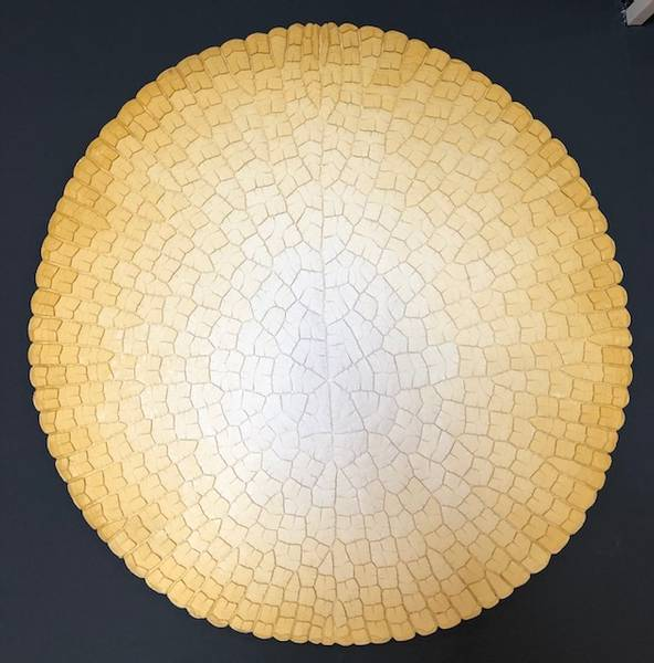 Bilde av Victoria Cruziana, gul 110 cm Ø